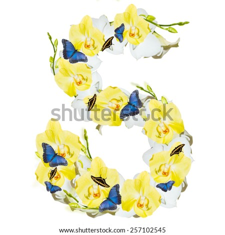 Image Of Letter K Flower Alphabet Isolated On White | Auto Design Tech