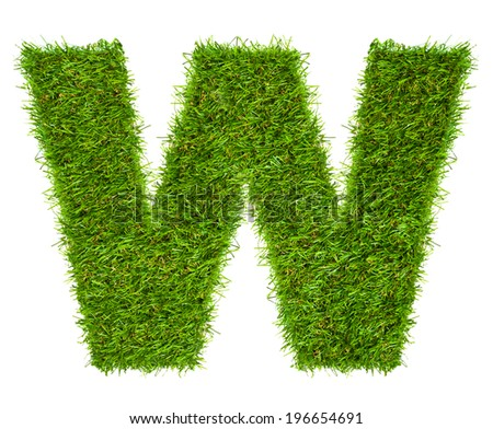 Letter W made of green grass isolated on white - stock photo