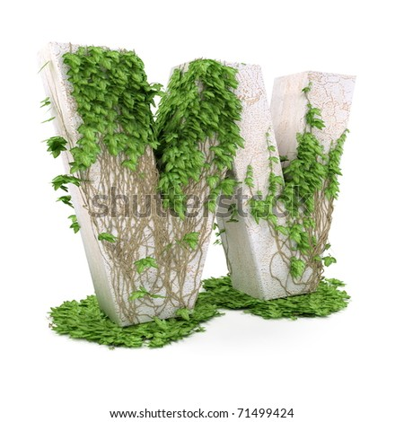 Letter W threads covered with ivy isolated on white background. - stock photo