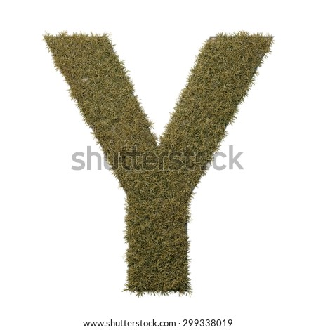 Letter Y made of dead grass, growing on wood with metal frame - stock photo