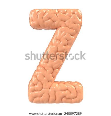Letter Z. Brain alphabet isolated on white background.Brain font.  - stock photo