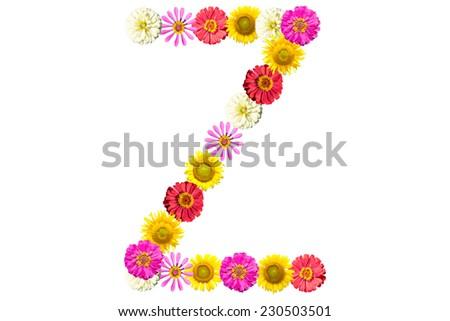 Lowercase Letter Z Letter Z - flower isolated on