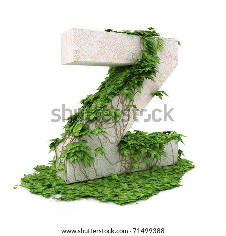 Letter Z threads covered with ivy isolated on white background. - stock photo