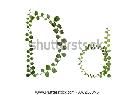 "Letters font ""D"" from climber leaf, ivy leaf, green leaf on isolated."