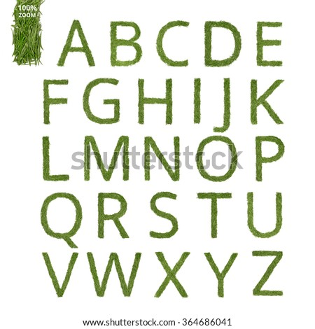 Letters of the English alphabet made of a pine needle