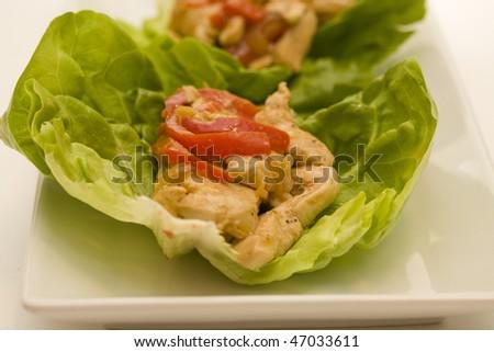 Lettuce Chicken Wrap - stock photo