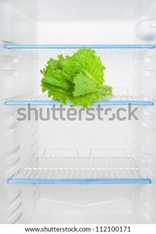 Lettuce in the refrigerator - stock photo