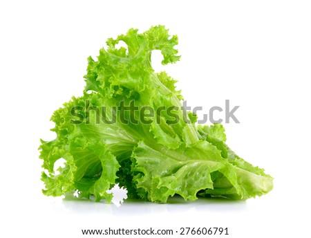 lettuce isolated on the white background. - stock photo