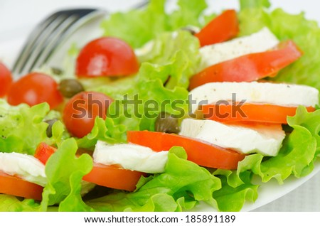 Lettuce salad with tomatoes and mozzarella