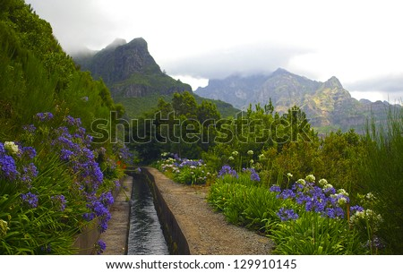 Levada of Madeira.Portugal - stock photo