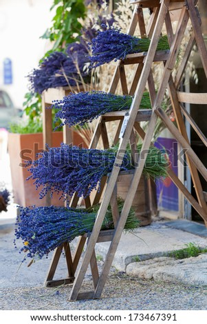 Levander bouquet on stair - stock photo