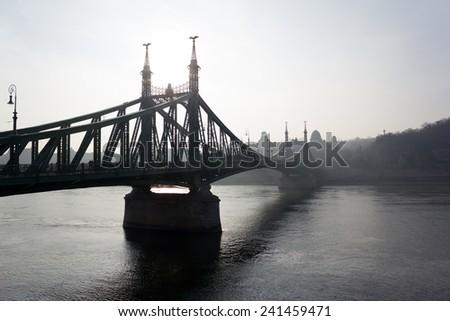Liberty Bridge, Budapest - stock photo