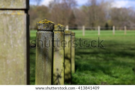 Lichen covering wooden fence posts in park green grass background