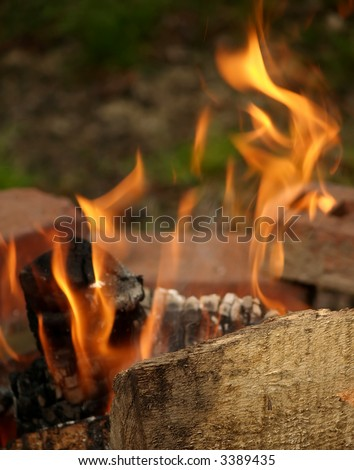 Licks of flame shoot upwards from a small campfire
