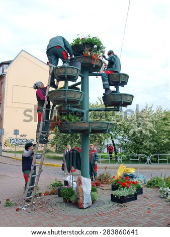 LIEPAJA, LATVIA - JUNE 2, 2015: Municipality worker women arranges flowers in pots making original street decor. - stock photo