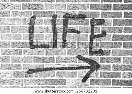 Life painted on a brick wall  in black and white  in black and white - stock photo