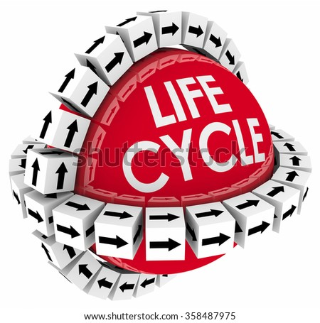 Lifecycle word on a sphere with cubes around it to illustrate a period of time or duration in the life of a product or system - stock photo