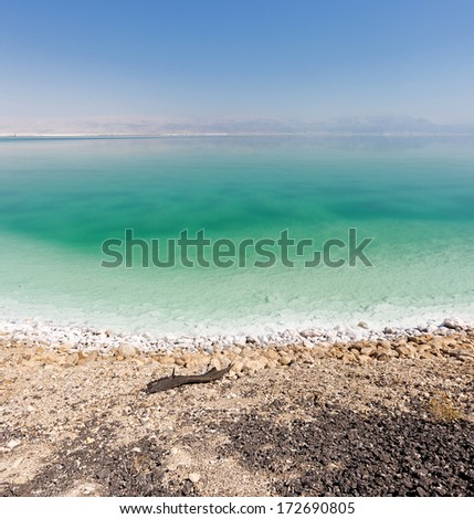 Lifeless shore of the Dead sea - Israel - stock photo