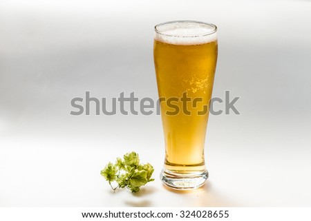 Light beer isolated from white