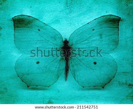 Light blue grunge butterfly background - stock photo