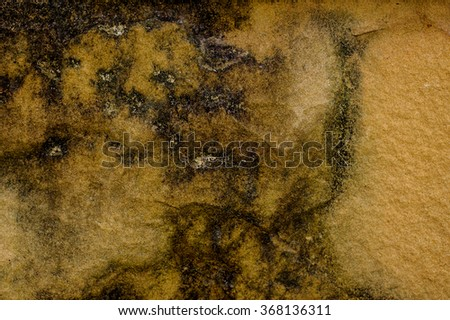 light brown stone Rock Texture natural background