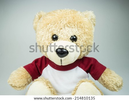 light brown teddy bear on white background