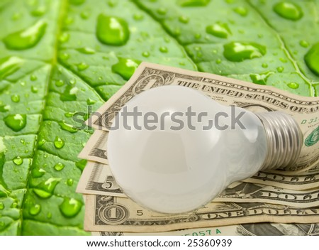 Light Bulb Dollars Green Leaf Background Stock Photo ...