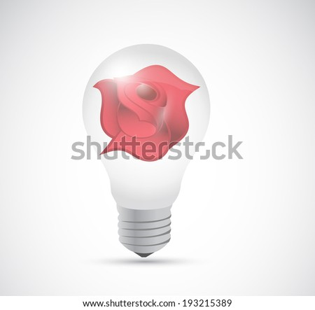 light bulb and red rose illustration design over a white background - stock photo