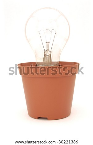 Light bulb in a plant pot isolated on a white background