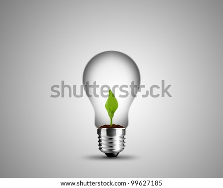 light bulb made from and small plant inside, light bulb conceptual Image. - stock photo