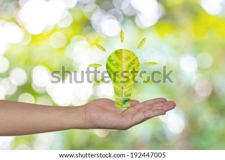 Light bulb made of green leaf on woman hands  Green eco energy concept. - stock photo