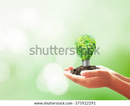 Light bulb of tree in hands. Eco friendly Bright Idea Fuel Alternative Saving Lamp Earth Hour Watt Thinking Smart Awareness CSR Soil Electric Solar Plant Safety Design Growth Shape Recycle Forest - stock photo