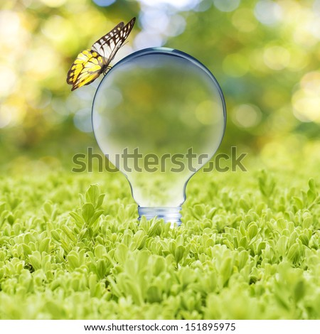 Light bulb on green grass and butterfly. Concept of Eco technology - stock photo