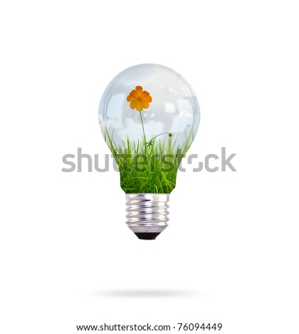 light bulb with beautiful flower inside - stock photo