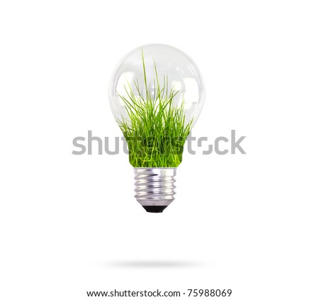 light bulb with grass inside - stock photo