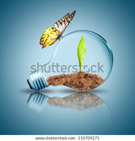 Light Bulb with green leaf and soil inside on floor. Butterfly flying on light bulb