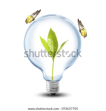 Light Bulb with plant inside and butterfly. Concept for Go Green and Ecology - stock photo