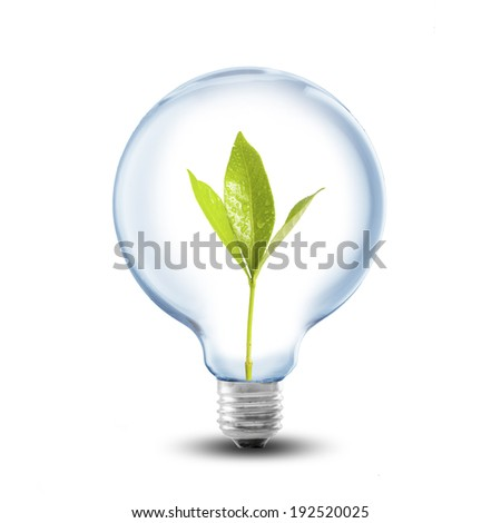 Light Bulb with plant inside. Concept for Go Green and Ecology - stock photo