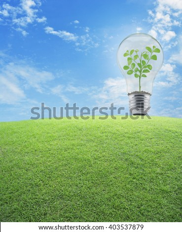 Light Bulb with small plant inside and green grass field over blue sky, Energy conservation and environmental concept - stock photo