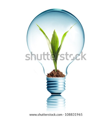 Light Bulb with soil and green plant sprout inside - stock photo