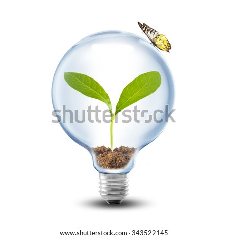 Green eco energy concept plant growing stock photo for Soil and green