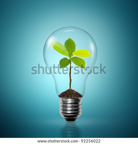 Light Bulb with sprout inside - stock photo