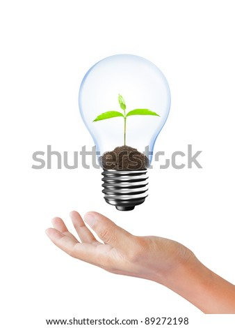 Light Bulb with sprout inside in hand