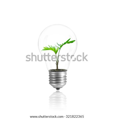Light Bulb with sprout inside isolated with clipping path.