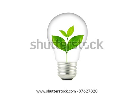 Light Bulb with sprout inside plant - stock photo