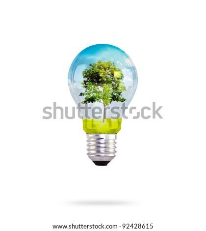 light bulb with tree inside - stock photo