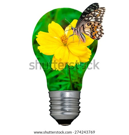 Light bulb with yellow flower inside and butterfly - stock photo