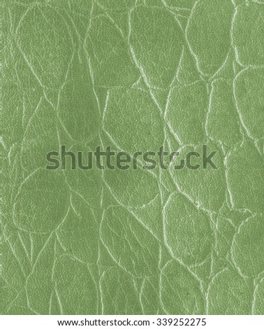 light green artificial snake skin texture  closeup. - stock photo