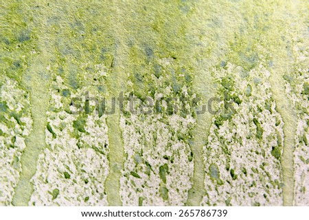 Light Green Watercolor Textures 2 - stock photo