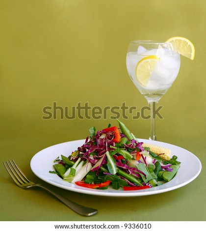 Light Salad With Water and Lemon as a Healthy Meal - stock photo